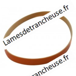COURROIE PLATE