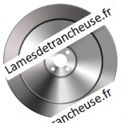 Lame 291X76.2X6X240X19.3 SS BV