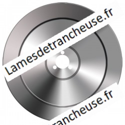 Lame 310X47X3X250X13.5 100CR6
