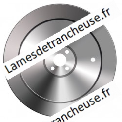 Lame 250X57X4X280X22,5 100CR6