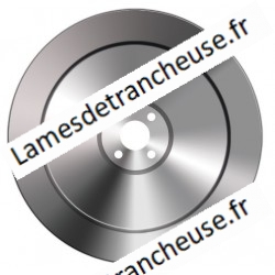 Lame 370X57X4X300X22.5 100CR6 TN
